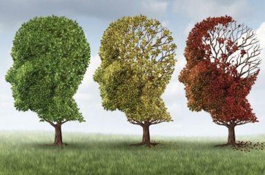 10 книг про хитрощі нашого мозку